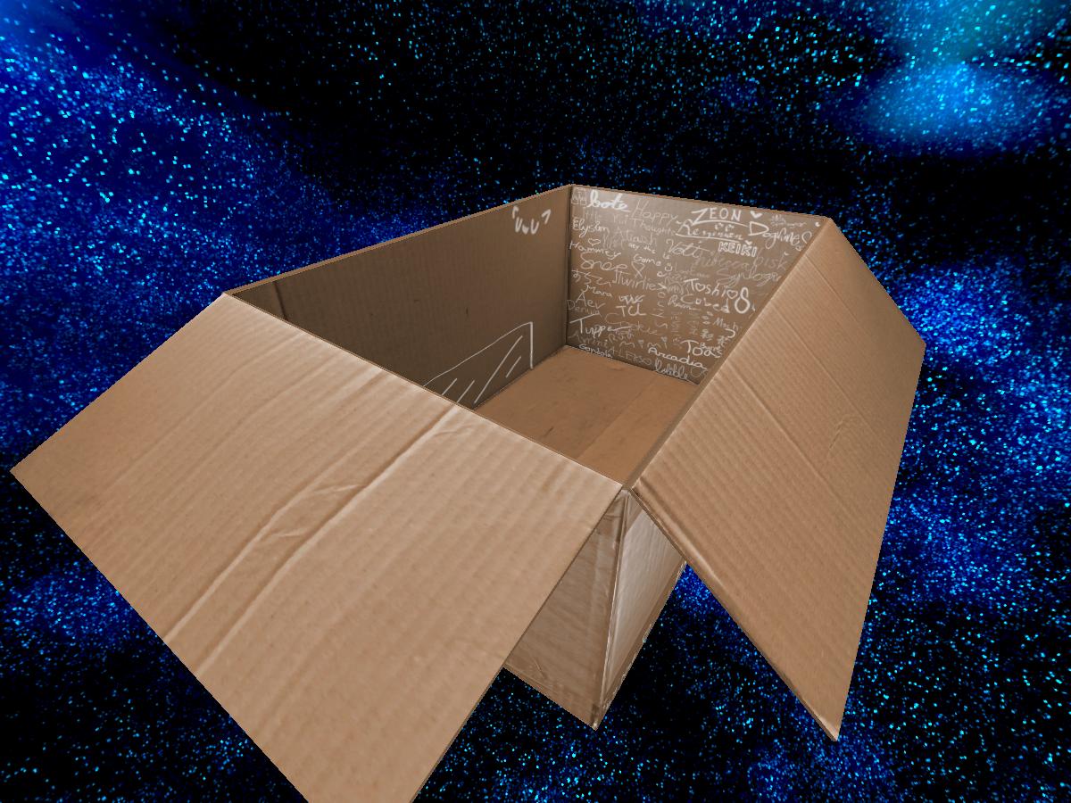 Noe's Cute Cardboard Box