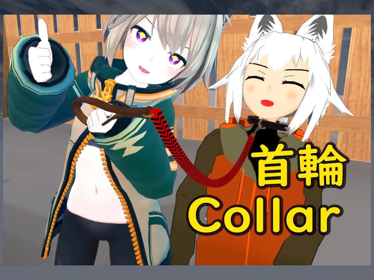 Collar and lead (首輪とリード)