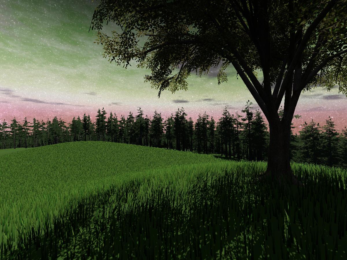 Grass N' Trees