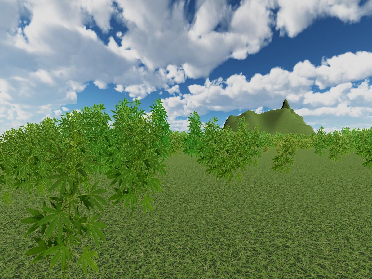 Weed Run 10․0