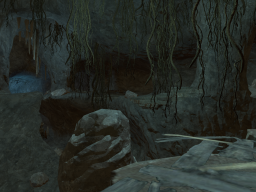 The Cave System